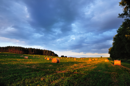Field with round hay bales against a picturesque cloudy sky in the light of low sun before sunset