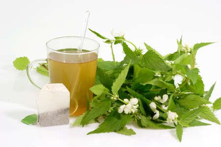 formic: T� de hierbas frescas con un Teabag