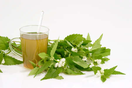 l natural: Fresh Stinging nettle tea on bright background