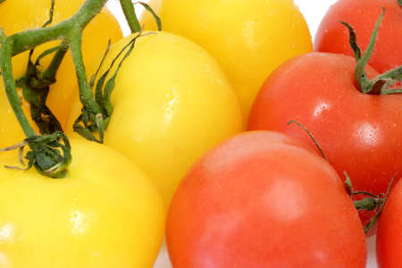 Red and yellow tomates on the bright background
