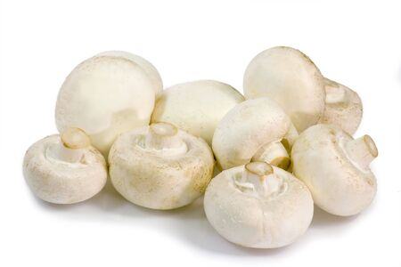 A bunch of white champignons on bright background Stock Photo - 2754236