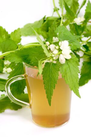 A glass of stinging nettle tea on bright background photo