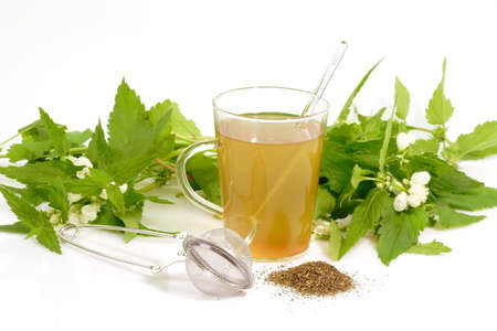 A cup of herb tea with stinging nettle on bright background photo
