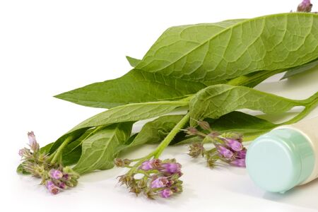 Closed tube with comfrey plants on bright background