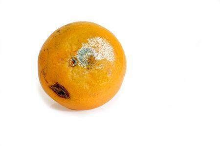 Mouldy fruit on bright background. photo