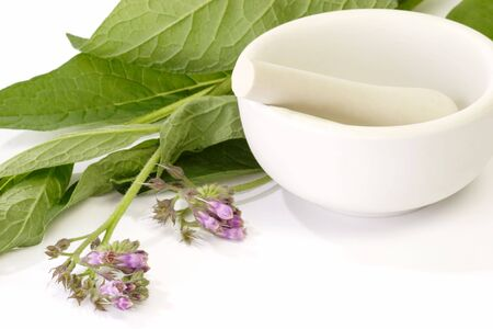 formulation: Fresh comfrey with mortar on white background