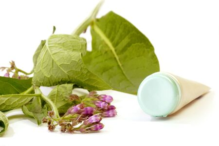 formulation: Fresh comfrey with closed tube on white background