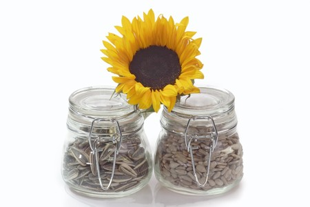 glas: Sunflower seeds on a bright background Stock Photo