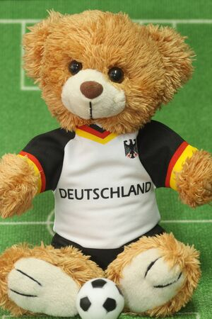 tricot: Teddy bear with football shirt on lawn background Stock Photo