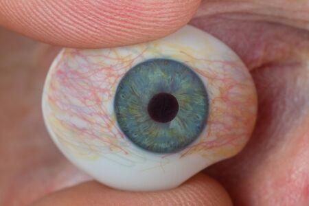 Glass eye in detal. Closeup shot in studio. Stock Photo - 12751349