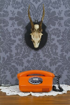 Concept - retro communication on floral wallpaper and antler photo