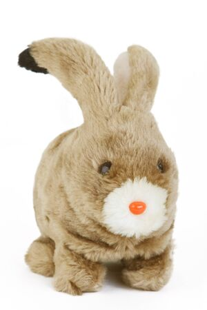 fluffy: Fluffy easter Bunny isolated on white background