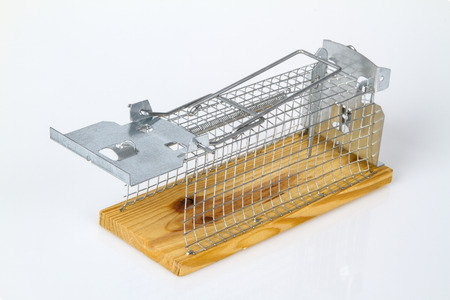 Mouse Trap isolated on white background Stock Photo