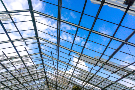 Greenhouse with broken glasswith blue sky , the construction is clearly visible.