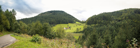 Panorama Black Forest - beautiful Landscape in Germany in Autumn Stok Fotoğraf