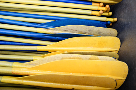 Yellow and Blue Boat Paddles in Detail 写真素材