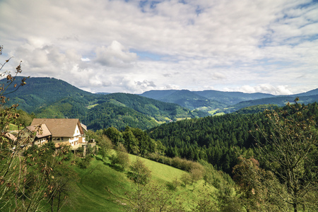 Black Forest in Baden Wuerttemberg in germany Stockfoto