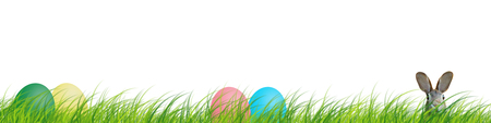 Hidden easter rabbit in a green meadow with colorful easter eggs isolated on white background. Zdjęcie Seryjne