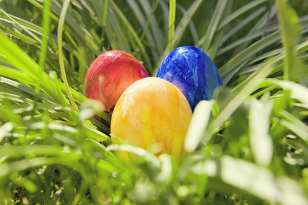 Colorful easter eggs in a nest made of green grass.