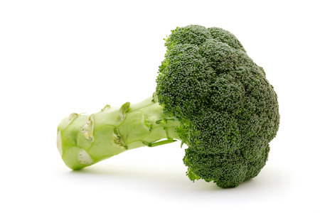 A whole broccoli plant isolated on white background. Green and vegan food, healthcare and organic fair trade concept.