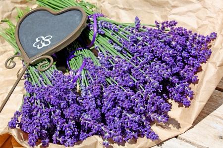 Bunch of lanvender flower on paper Stock Photo - 9159183