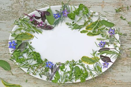 various herbs on plate