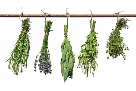 medicinal herbs: herbs hanging upside-down  Stock Photo