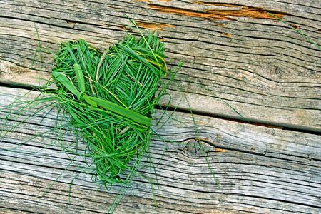 heart shaped from green grass