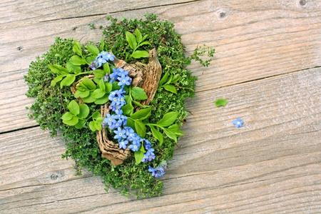 szív kakukkfű és nefelejcs virág