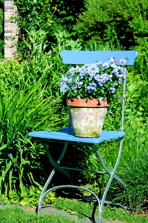 garden chair with flower pot