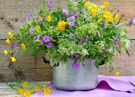 buttercup: old pot with wild flowers Stock Photo