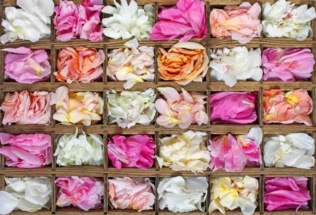kollázs különböző rózsaszirom