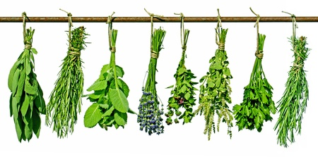 herb tea: various herbs hanging on a rod, isolated