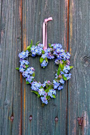 heart made of forget-me-not flowers Stock Photo - 13152343
