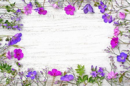 frame made of  different, fresh flowers Stock Photo