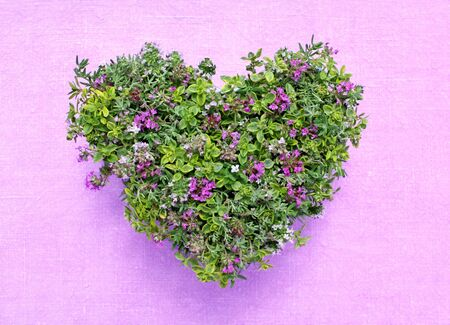 heart made of different varieties of thyme