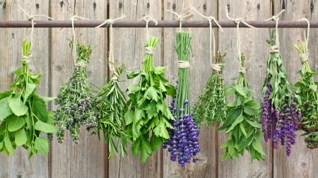 various herbs hanging on an iron rod