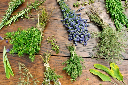various herbs in bundles on a table Stock Photo
