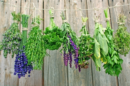 various herbal bunch hanging on a leash