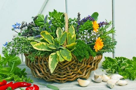 Egy kosár különböző friss fűszernövényeket és a fokhagymát, és peperoni