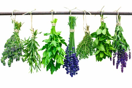 Various fresh herbs hanging on an iron rod