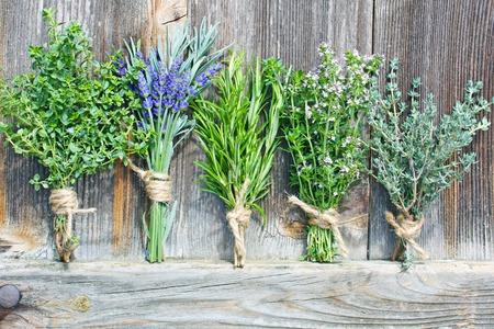 posy of  various fresh herbs