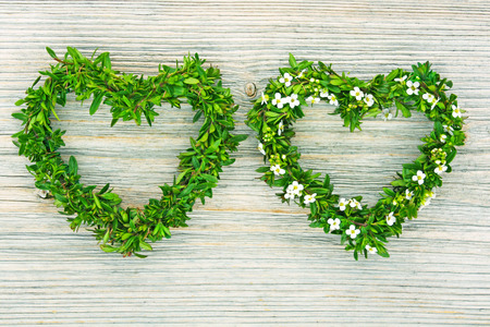 two hearts formed from fresh branches of thyme and small floret on wooden background