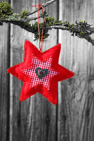 hand-sewn red christmas star hangs on a branch