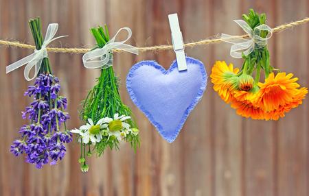 calendula: lavender, chamomile and calendula hanging on a leash