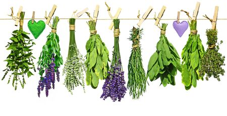 Various fresh herbs and hearts of cloth hanging on a leash
