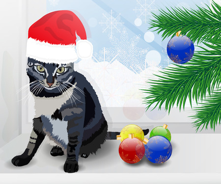 christmas pussy: Realistic cat. Beautiful gray. Merry Christmas and a Happy New Year. Santa hat for your design. Stock Photo