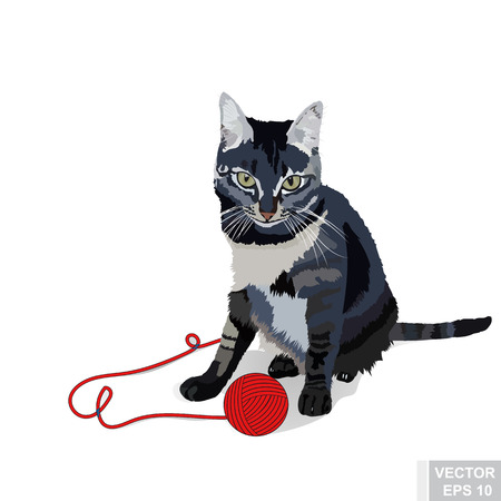 Realistic cat. Beautiful gray. Ball of yarn. Playing. For your design.