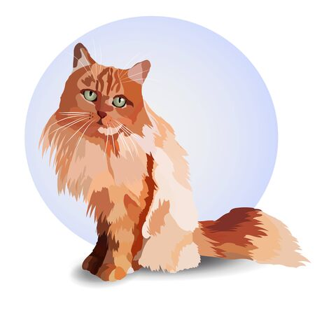 realistic cat. Red color. Sitting watching. Pet. Adoption.