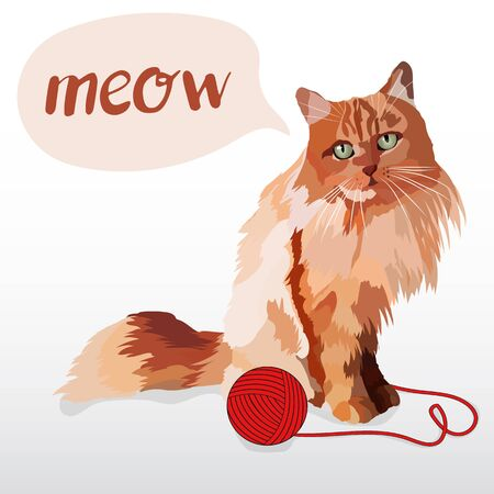 realistic cat. Red color. Sitting watching. Pet. Adoption. The game, a ball of yarn. Stock Photo